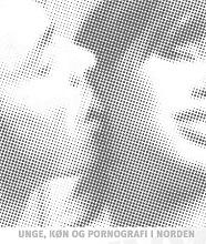Unge, køn og pornografi i Norden. Slutrapport